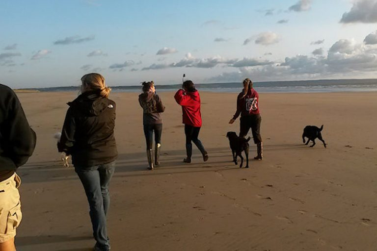 Dog friendly beaches North Devon