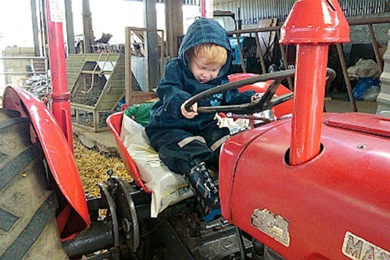 Vintage tractor rides
